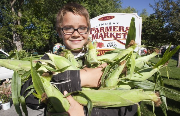 Boy holding corn stalks at Lindsay Farmers Market