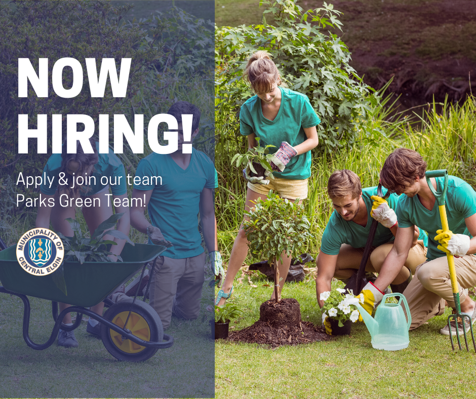 Apply & join our team Parks Green Team!
