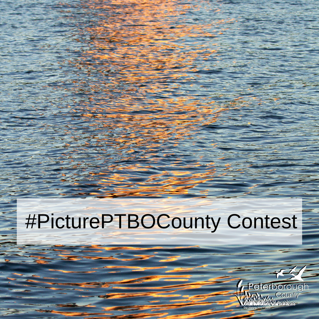 Picture PTBO Contest