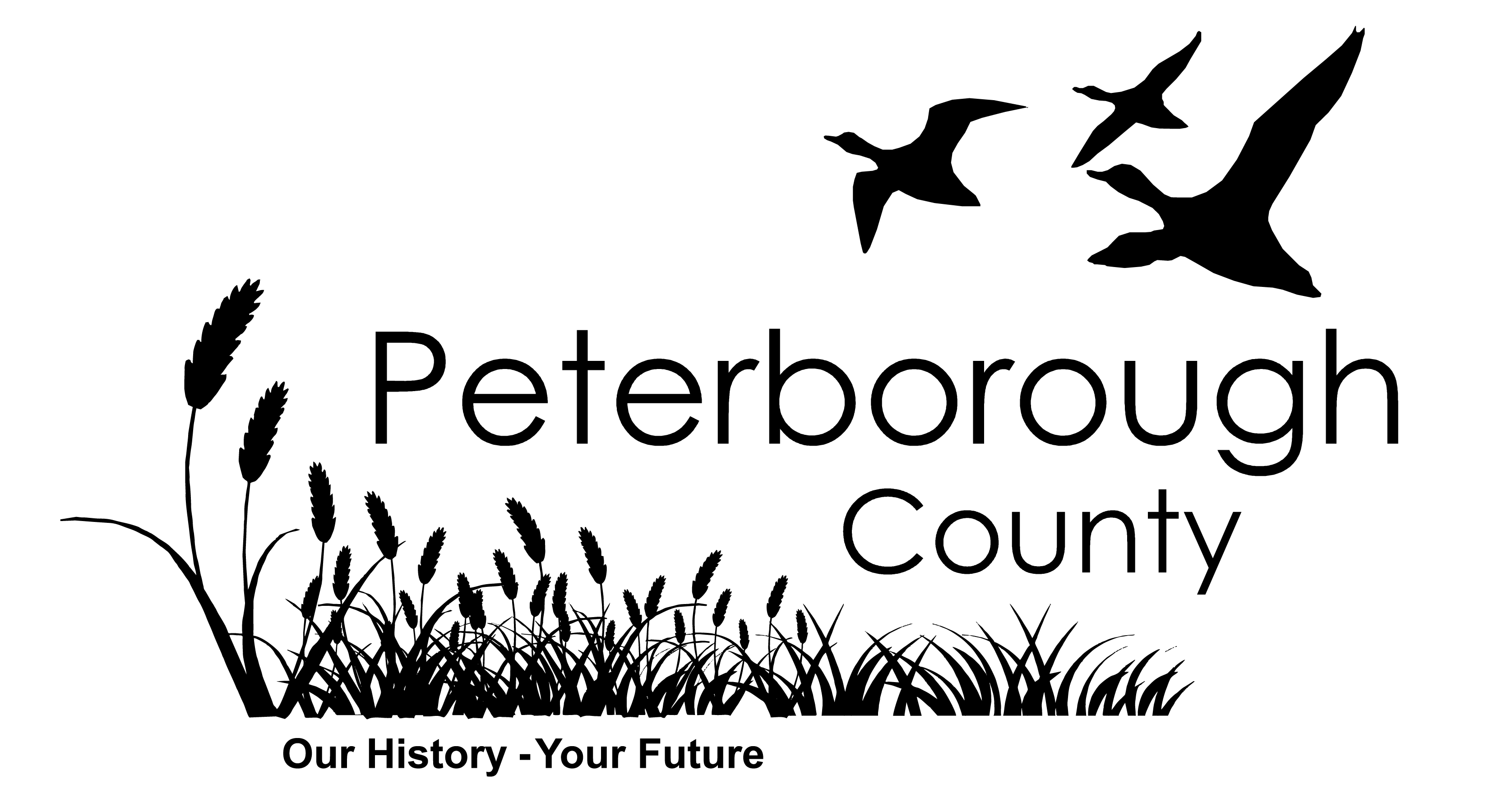 county logo-med