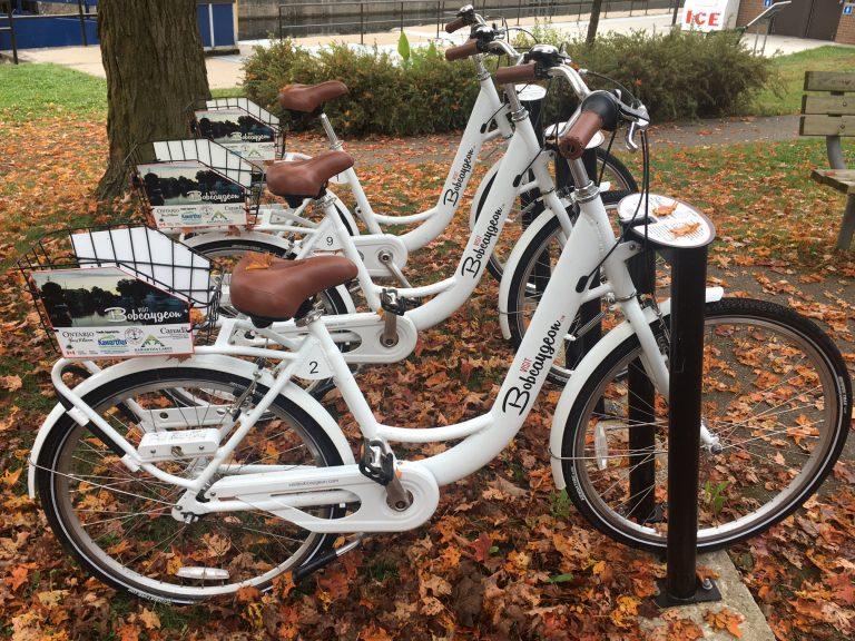 Bike-share-768x576